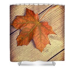 Autumn Leaf Shower Curtain by Amanda Elwell