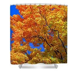 Autumn Leaf Rainbow Shower Curtain
