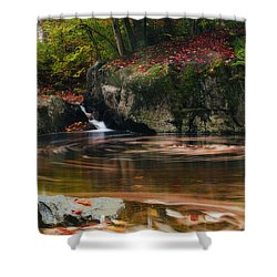Autumn Leaf Trails Shower Curtain by John Vose