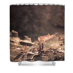 Autumn Leaves Shower Curtain by Amanda Elwell