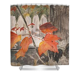 Autumn Leaves On Belmont St Shower Curtain