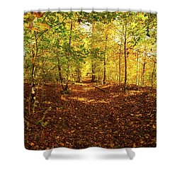 Autumn Leaves Pathway  Shower Curtain by Jerry Cowart