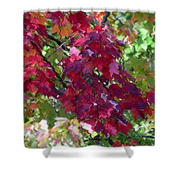Autumn Leaves Reflections Shower Curtain