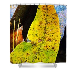 Autumn Leaves Shower Curtain by Robyn King