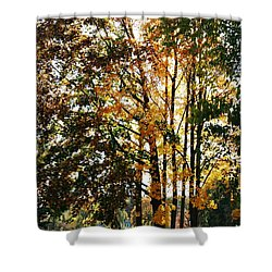Autumn Light Shower Curtain by Barbara Bardzik