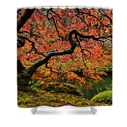Autumn Magnificence Shower Curtain