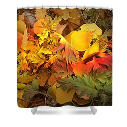 Autumn Masquerade Shower Curtain by Martin Howard