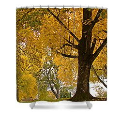 Autumn Memories Shower Curtain by Beverly Guilliams
