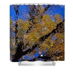 Autumn Memories Shower Curtain