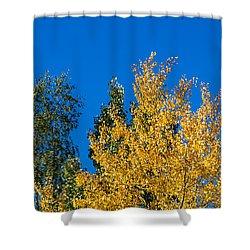 Autumn Mix 2 - Featured 3 Shower Curtain by Alexander Senin