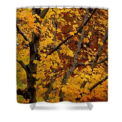 Autumn Moods 21 Shower Curtain by Rodney Lee Williams