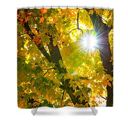 Autumn Morn Shower Curtain
