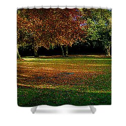 Autumn Shower Curtain by Nina Ficur Feenan