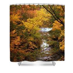 Shower Curtain featuring the photograph Autumn On Display by Jessica Jenney