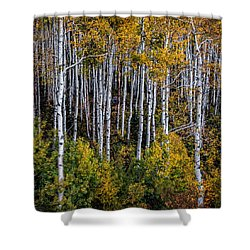 Shower Curtain featuring the photograph Autumn On Mcclure Pass by Ken Smith