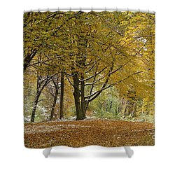 Shower Curtain featuring the photograph autumn on Moenchsberg in Salzburg by Rudi Prott