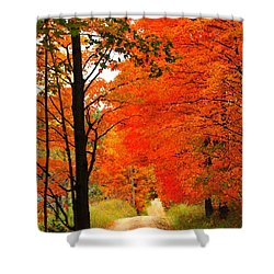 Autumn Orange 2 Shower Curtain by Terri Gostola