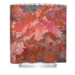 Autumn Paintbrush Shower Curtain