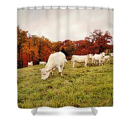 Autumn Pastures Shower Curtain