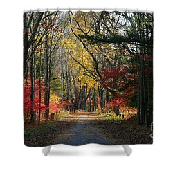 Autumn Paths    No.2 Shower Curtain