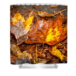 Autumn Pile Shower Curtain