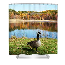 Autumn Pond Goose Shower Curtain