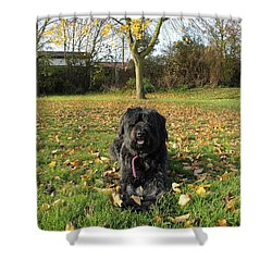 Shower Curtain featuring the photograph Autumn Portrait by Vicki Spindler