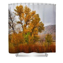 Autumn Rain In Chimayo Shower Curtain