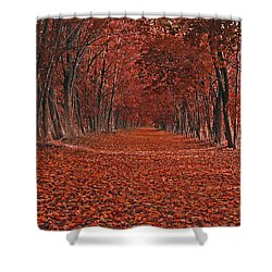 Autumn Shower Curtain by Raymond Salani III
