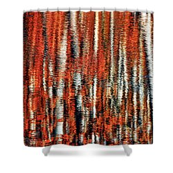 Autumn Reflection Shower Curtain by Marcia Colelli