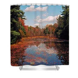 Autumn Reflections Shower Curtain by Joann Vitali