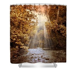 Shower Curtain featuring the photograph Autumn River Light by Jessica Jenney