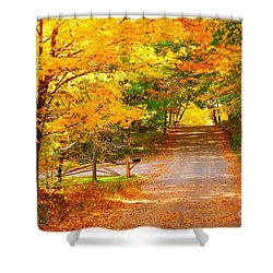 Autumn Road Home Shower Curtain
