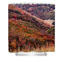 Autumn Shower Curtain by Rona Black