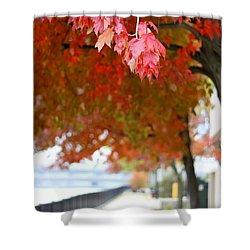 Shower Curtain featuring the photograph Autumn Sidewalk by Viviana  Nadowski