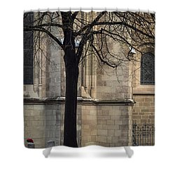 Autumn Silhouette Shower Curtain