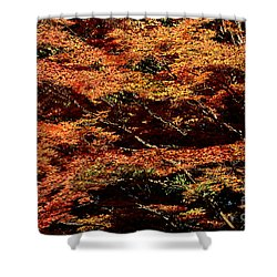 Shower Curtain featuring the digital art Autumn Solarisation 1 by Rudi Prott