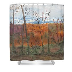 Autumn Splendor Shower Curtain by Diane Pape