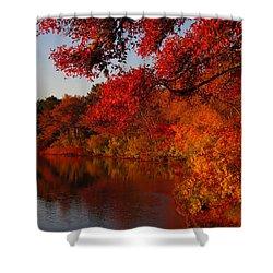 Shower Curtain featuring the photograph Autumn Splendor  by Dianne Cowen