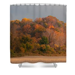 Autumn Splendor Shower Curtain by Don Spenner