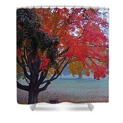 Autumn Splendor Shower Curtain by Lisa Phillips