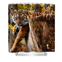 Autumn Tiger Shower Curtain by Elaine Manley