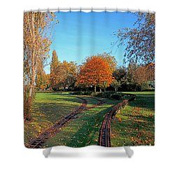 Autumn Tracks Shower Curtain by Terri Waters