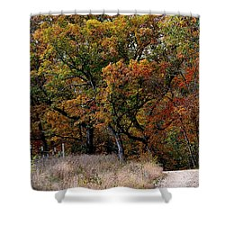 Autumn Trail 2 Shower Curtain