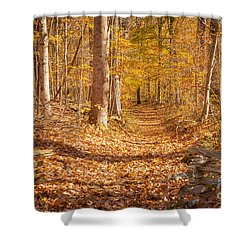 Autumn Trail Shower Curtain by Brian Jannsen