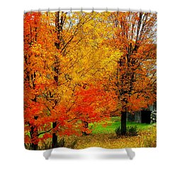 Shower Curtain featuring the photograph Autumn Trees By Barn by Rodney Lee Williams