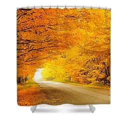 Autumn Tunnel Of Gold 8 Shower Curtain by Terri Gostola