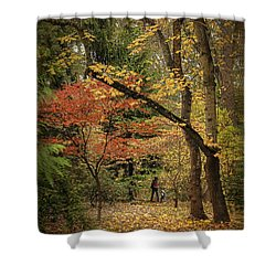 Autumn Walk Shower Curtain by Diane Schuster