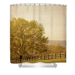 Autumn Wonders Shower Curtain by Kim Hojnacki