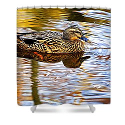 Autumns Brilliance Shower Curtain by Frozen in Time Fine Art Photography